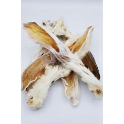 Kaninchenohren mit Fell (6x)